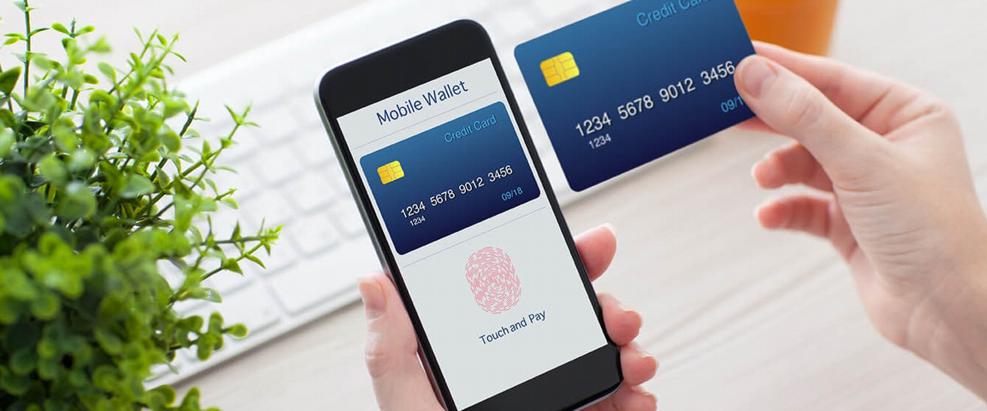 E-Money Payments